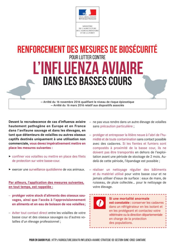 Affiche grippe aviaire